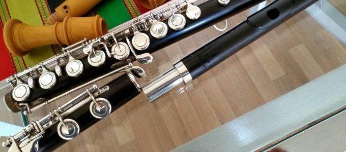 Horacio Parravicini's flutes